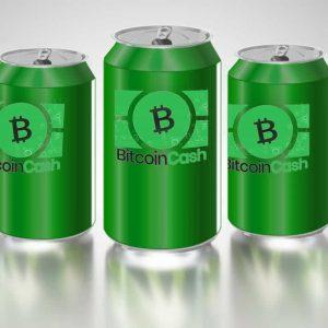 bitcoin cash supporters prepare for the networks next six months 300x300 - Bitcoin Cash Supporters Prepare for the Network's Next Six Months