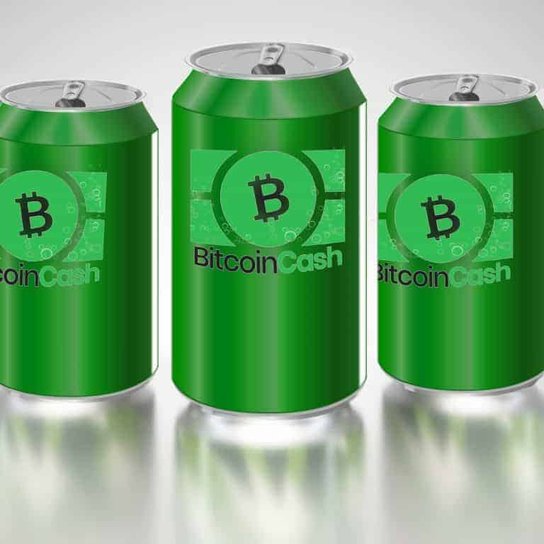 Bitcoin Cash Supporters Prepare for the Network's Next Six Months