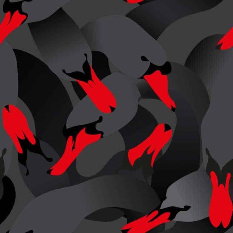 This Week in Bitcoin: Black Swans