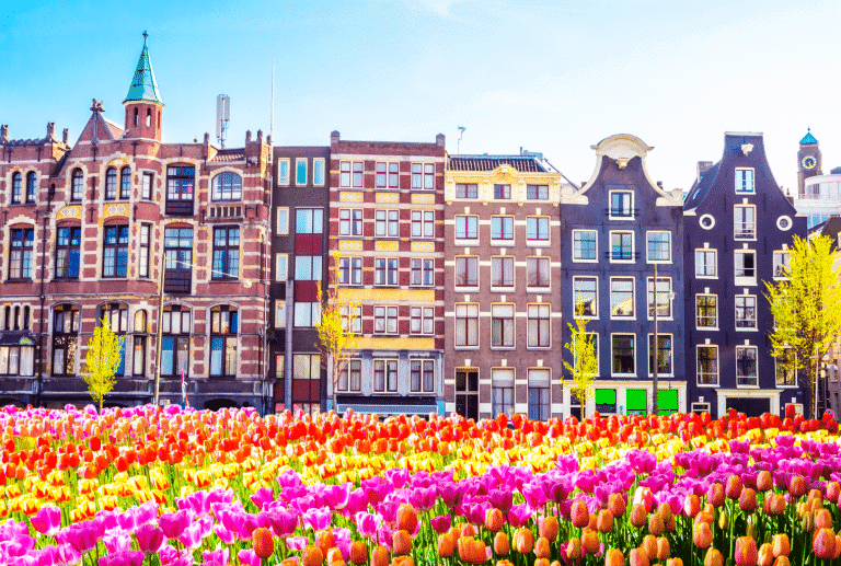 Dutch Central Bank Prepares to Start Regulating Crypto Sector - Dutch Central Bank Prepares to Start Regulating Crypto Sector