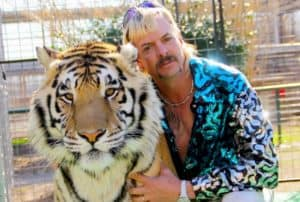 Tiger King's Archnemesis Big Cat Rescue Accepts Bitcoin 300x202 - Tiger King's Archnemesis Big Cat Rescue Accepts Bitcoin